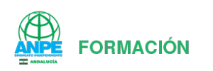 Anpe Formación
